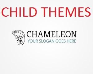 Chameleon child best WordPress theme