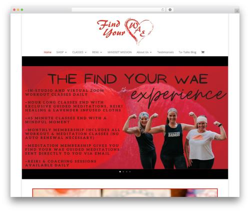 Free WordPress Free Squeeze Page, Landing Page Builder & Templates Creator For WordPress plugin - findyourwae.com