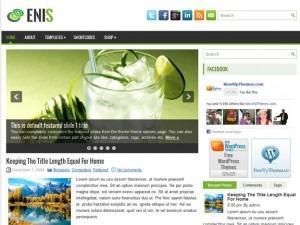 Enis WordPress blog theme