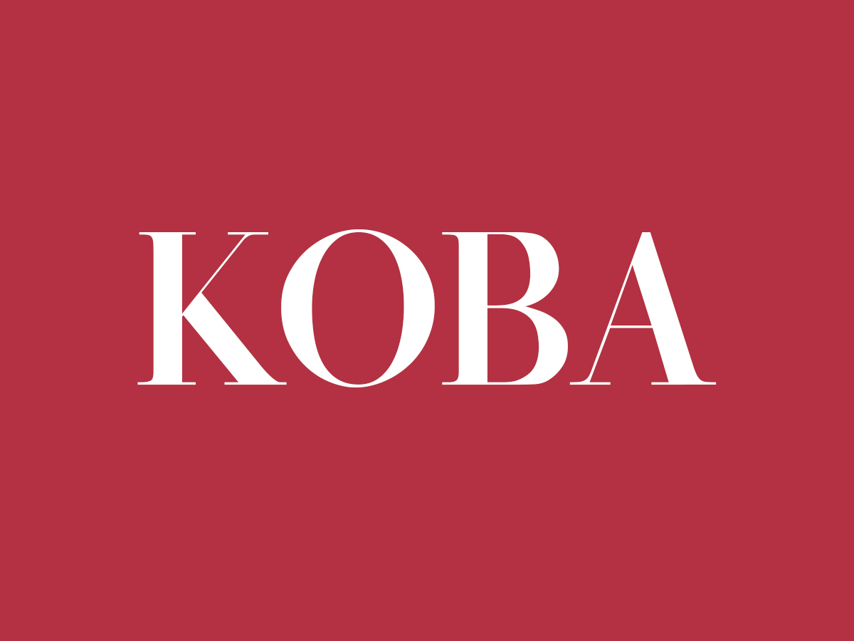 Koba WordPress template for business