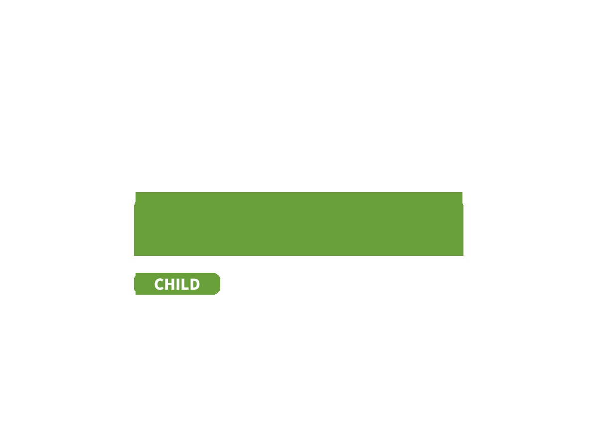 micata2 Child WordPress theme