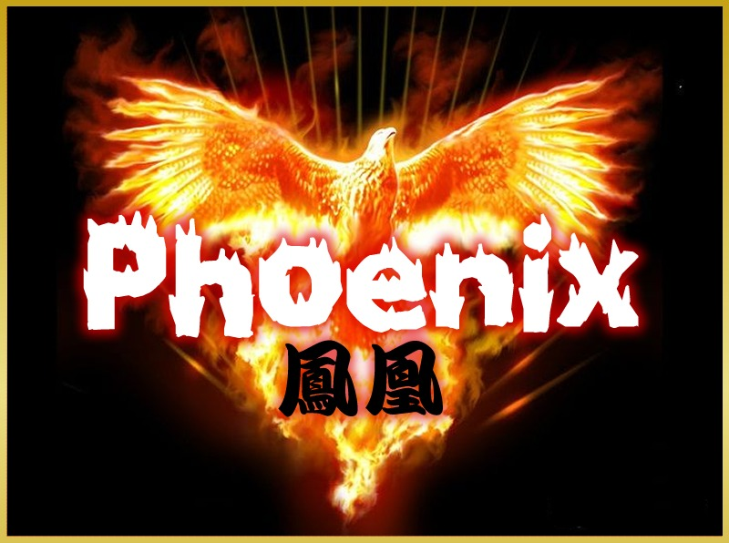 Phoenix鳳凰 WordPress website template