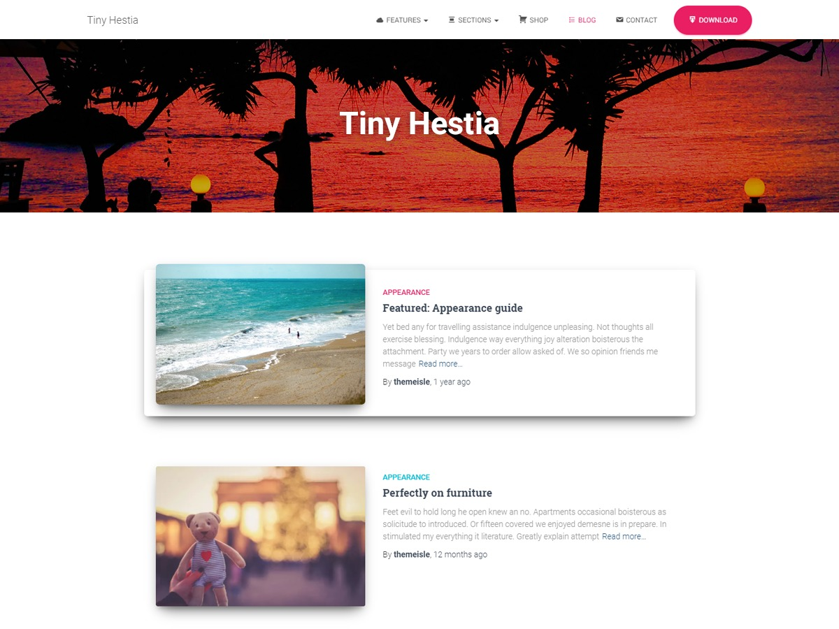 Tiny Hestia template WordPress free