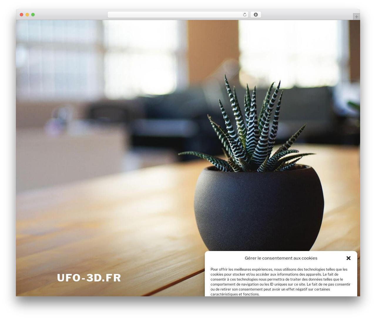 Twenty Seventeen best free WordPress theme - ufo-3d.fr