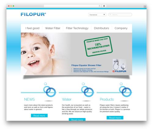 WordPress template Theme 1257 - filopur.com