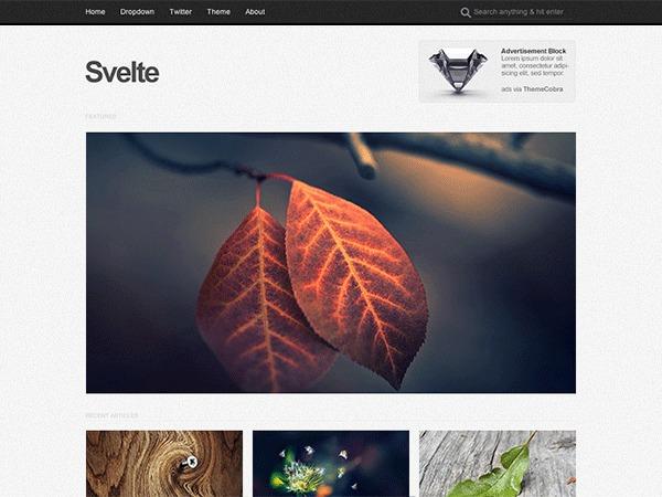WordPress website template Svelte