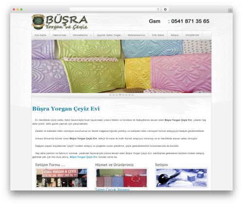 Complexity WordPress theme design - busrayorganceyiz.com