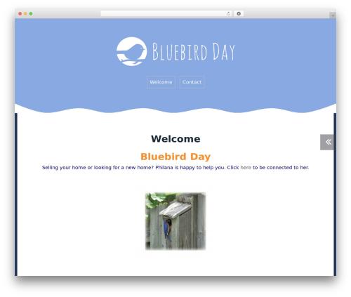 Roda free WP theme - bluebird-day.com
