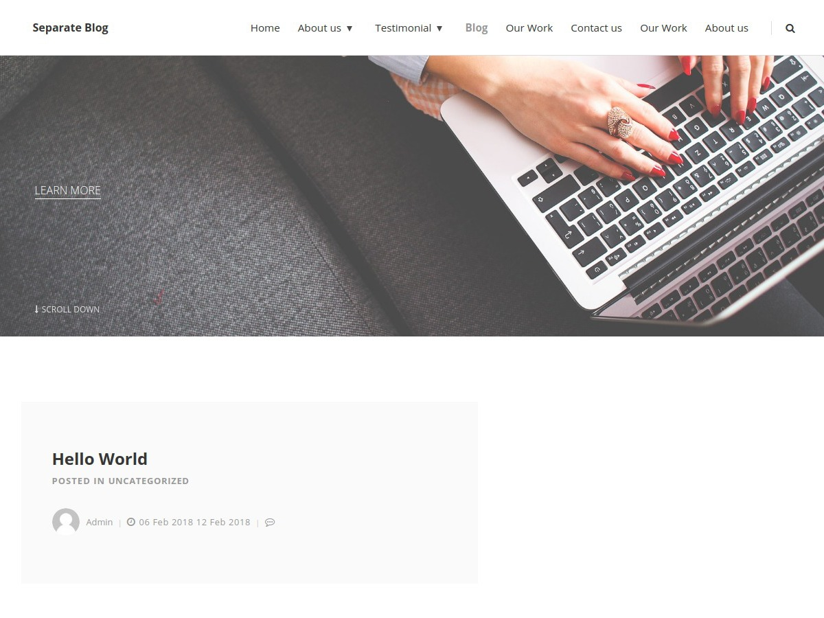 Separate Blog WordPress blog template