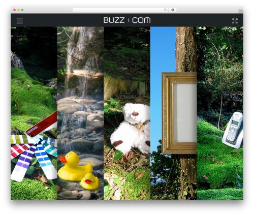 WordPress theme GOODWIN - buzzcom.ch