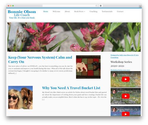 Customizr WordPress theme download - bonnieolsonlifecoach.com