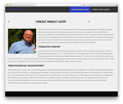 accurate theme WordPress - bruceheen.com