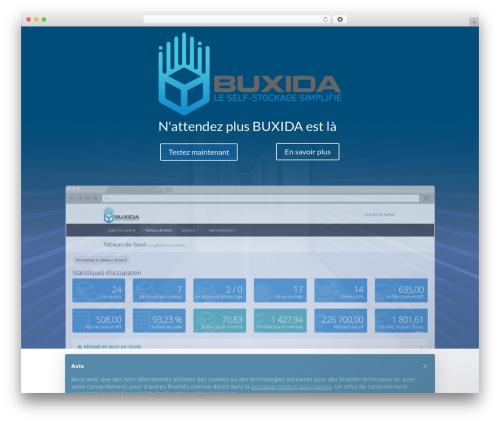 Leadinjection WordPress theme - buxida.com