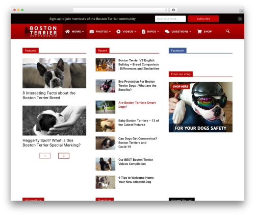 Newspaper WordPress news theme - bterrier.com