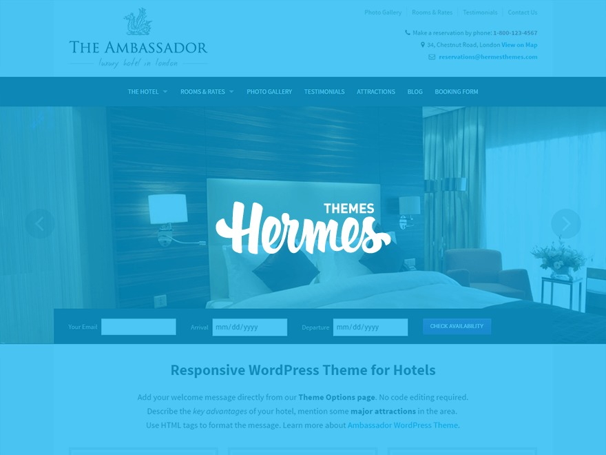 Ambassador business WordPress theme