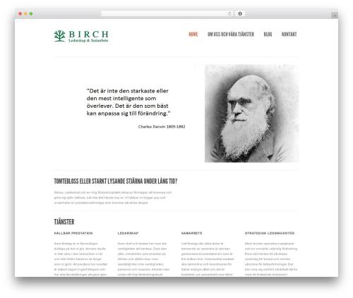 Birch theme WordPress - birch.se