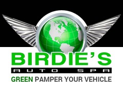 Birdie's Auto Spa template WordPress