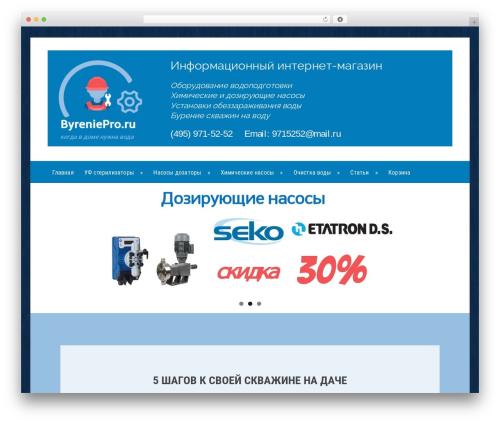Emulator Pro theme WordPress - byreniepro.ru