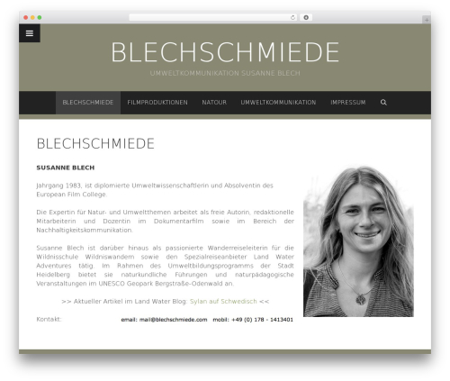 Freelancer template WordPress free - blechschmiede.info