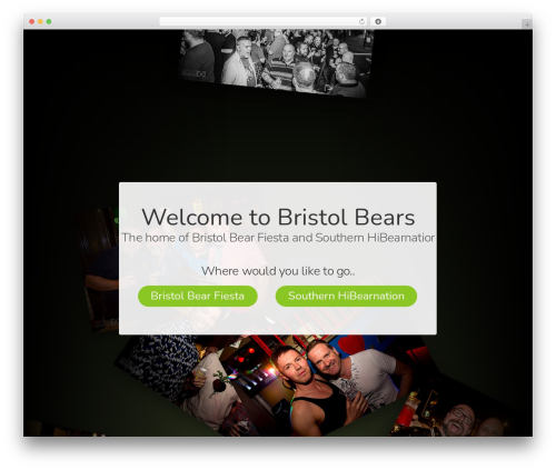 The7 WP template - bristolbears.co.uk