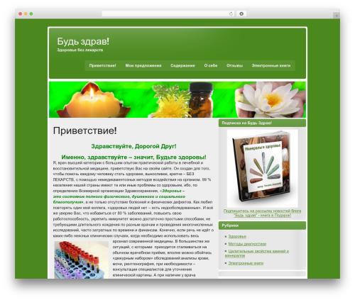 WordPress website template zeeStyle - bud-zdrav.com