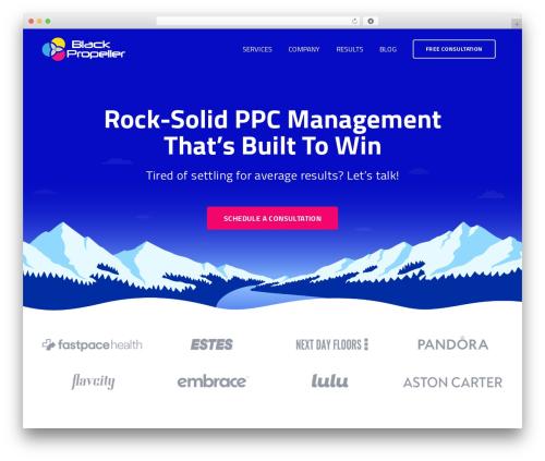 Free WordPress Team WD – a responsive team/staff showcase plugin plugin - blackpropeller.com