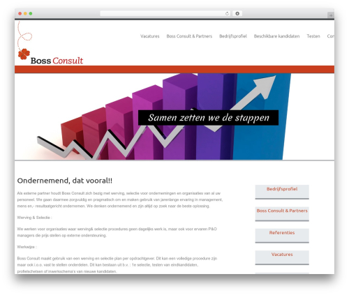Celestial best WordPress template - bossconsult.nl