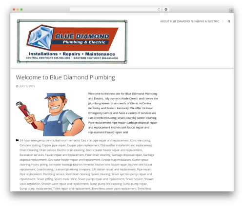 AccessPress Root WordPress theme - blue-diamondplumbing.com