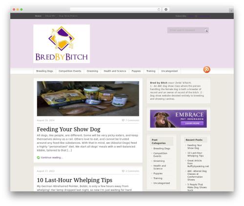 Fresh News WordPress news theme - bredbybitch.com