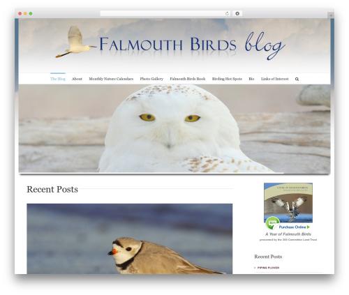 Avada WP template - falmouthbirds.com