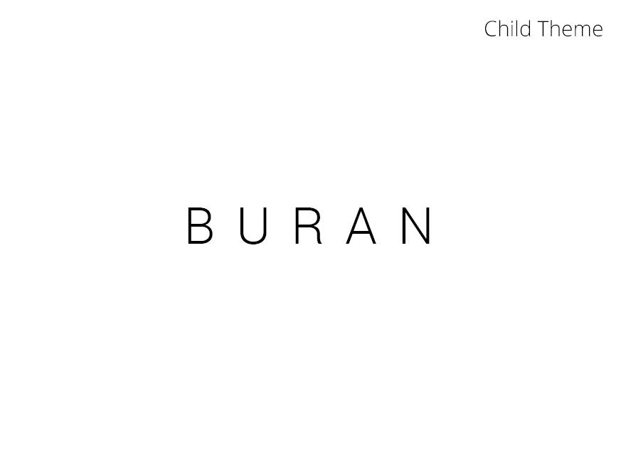 Best WordPress theme Buran - Child