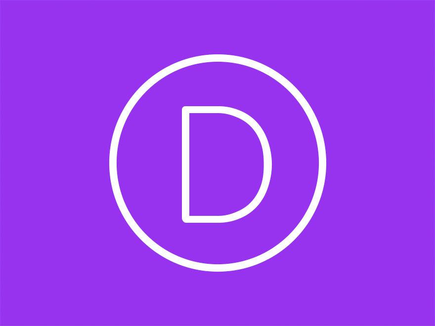Divi WordPress page template