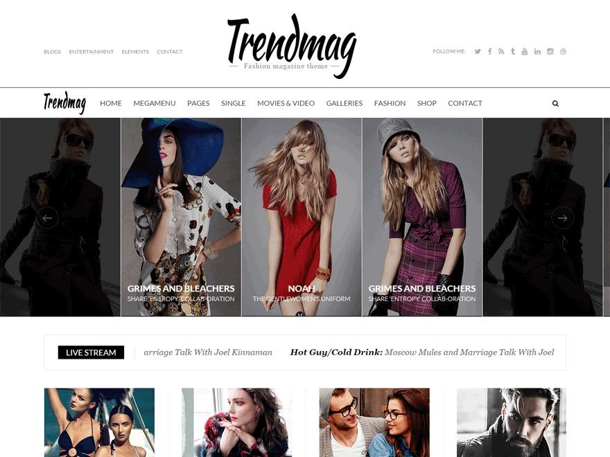 Trendmag free WP theme