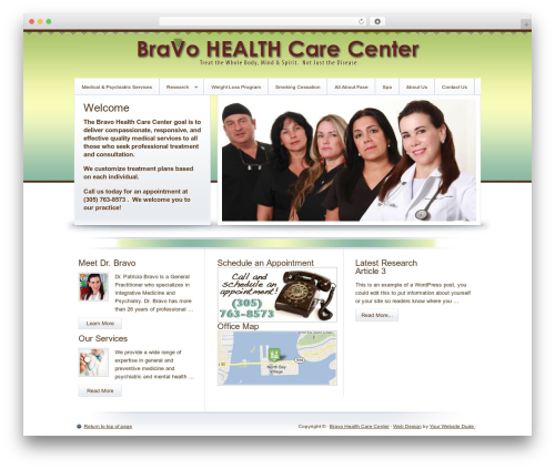 Crystal Child Theme WordPress theme - bravohealthcarecenter.com