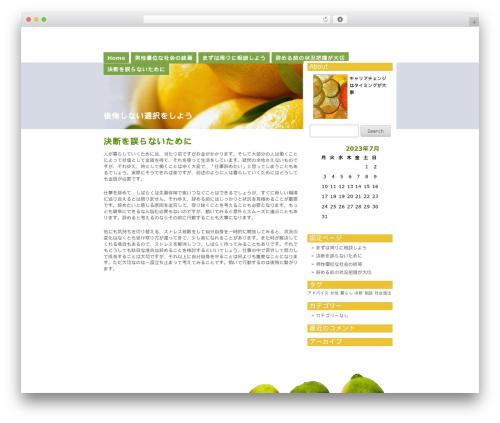 Template WordPress Citrus Mix - beautyerfolg.info