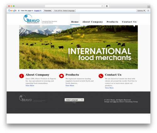 Small Business free WP theme - bravoproducts.ca