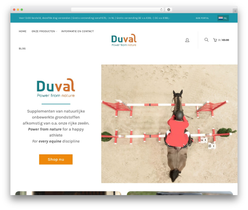Best WordPress template Basel - duvalhorseproducts.com