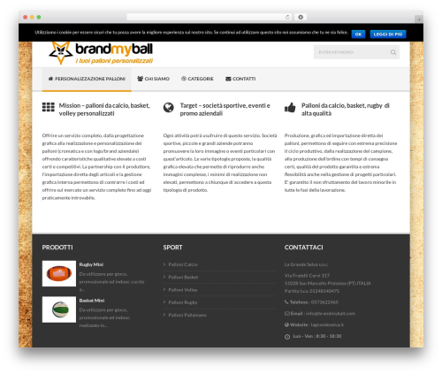 Delicate top WordPress theme - brandmyball.com