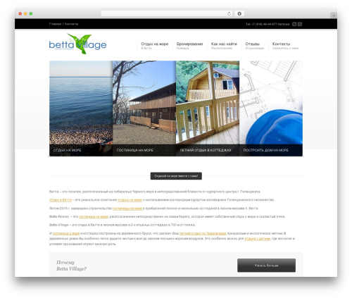 Corona best WordPress theme - betta-village.ru