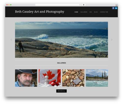 Portafolio WordPress gallery theme - bethcausley.com
