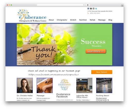 WordPress website template Striking MultiFlex & Ecommerce Responsive WordPress Theme - exuberancechiropractic.com