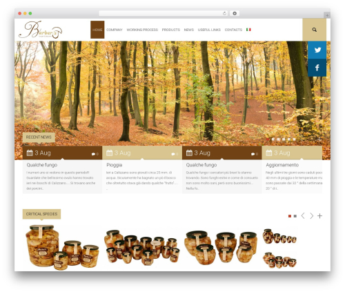 Environmental premium WordPress theme - barberisfunghi.com