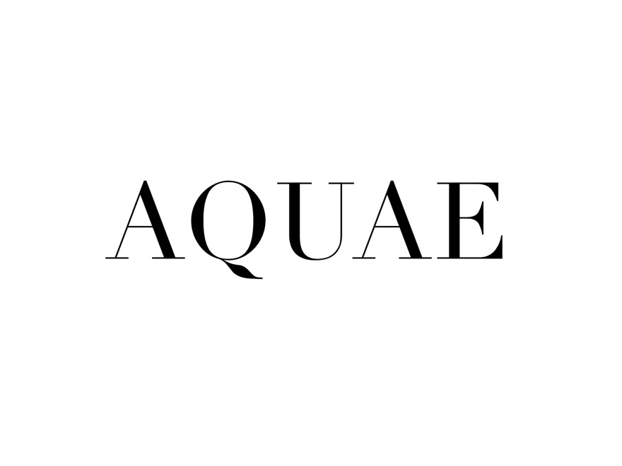 Aquae (pipdig) best WordPress theme