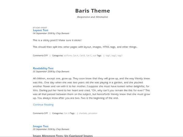 Baris WP theme