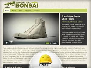 Best WordPress template Foundation - Bonsai