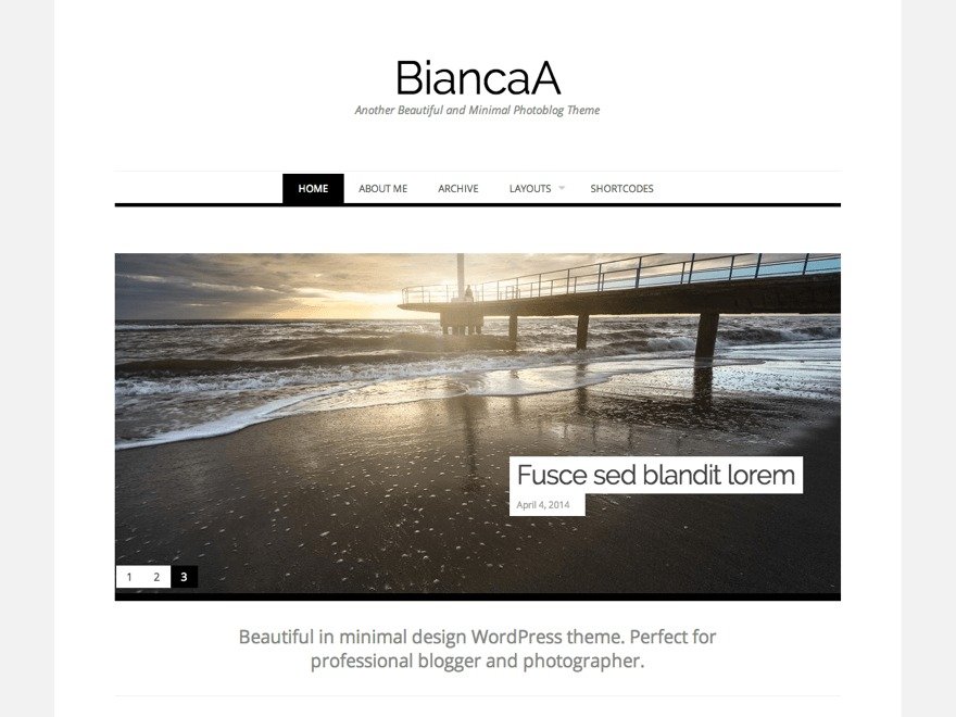 Biancaa template WordPress free