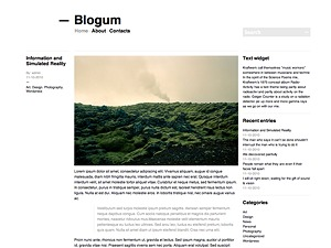 Blogum WordPress template for photographers