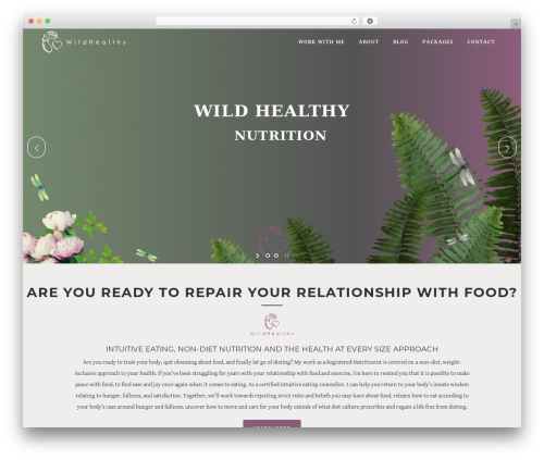 Free WordPress MailChimp for WordPress plugin - wildhealthy.com