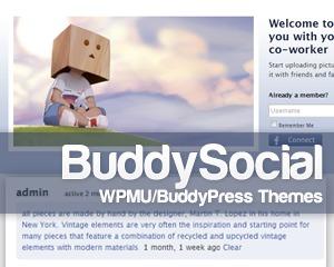 BuddyPress Social WP theme