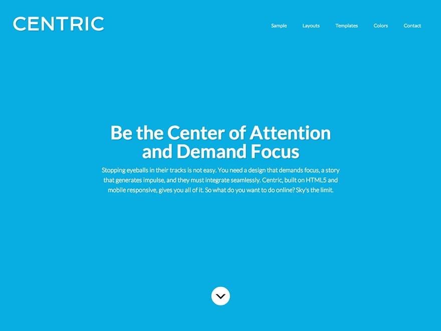 Centric Theme WordPress theme design